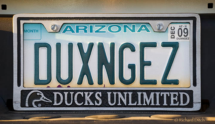 Ducks and Geese vanity plate