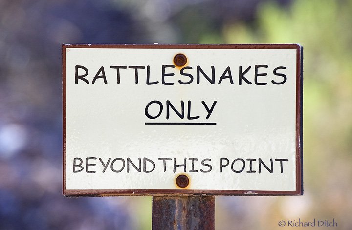 Rattlesnakes Only Sign at BTA