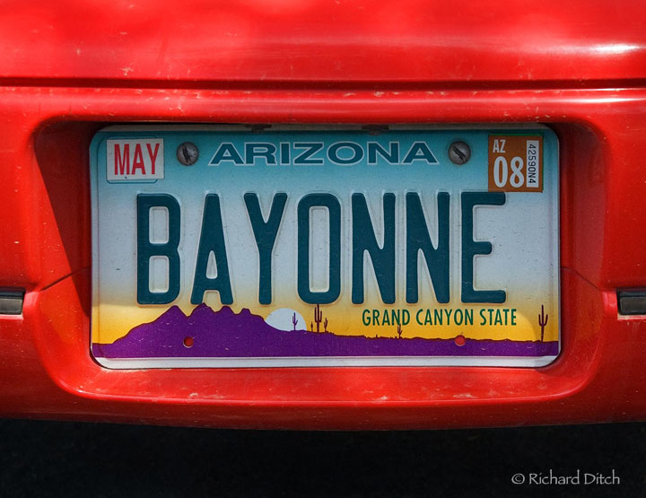 Bayonne plate