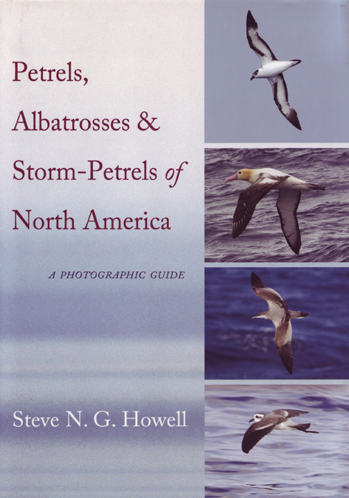 Howell Petrels